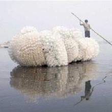 """""""Indra's Cloud"""", a floating sculpture"""