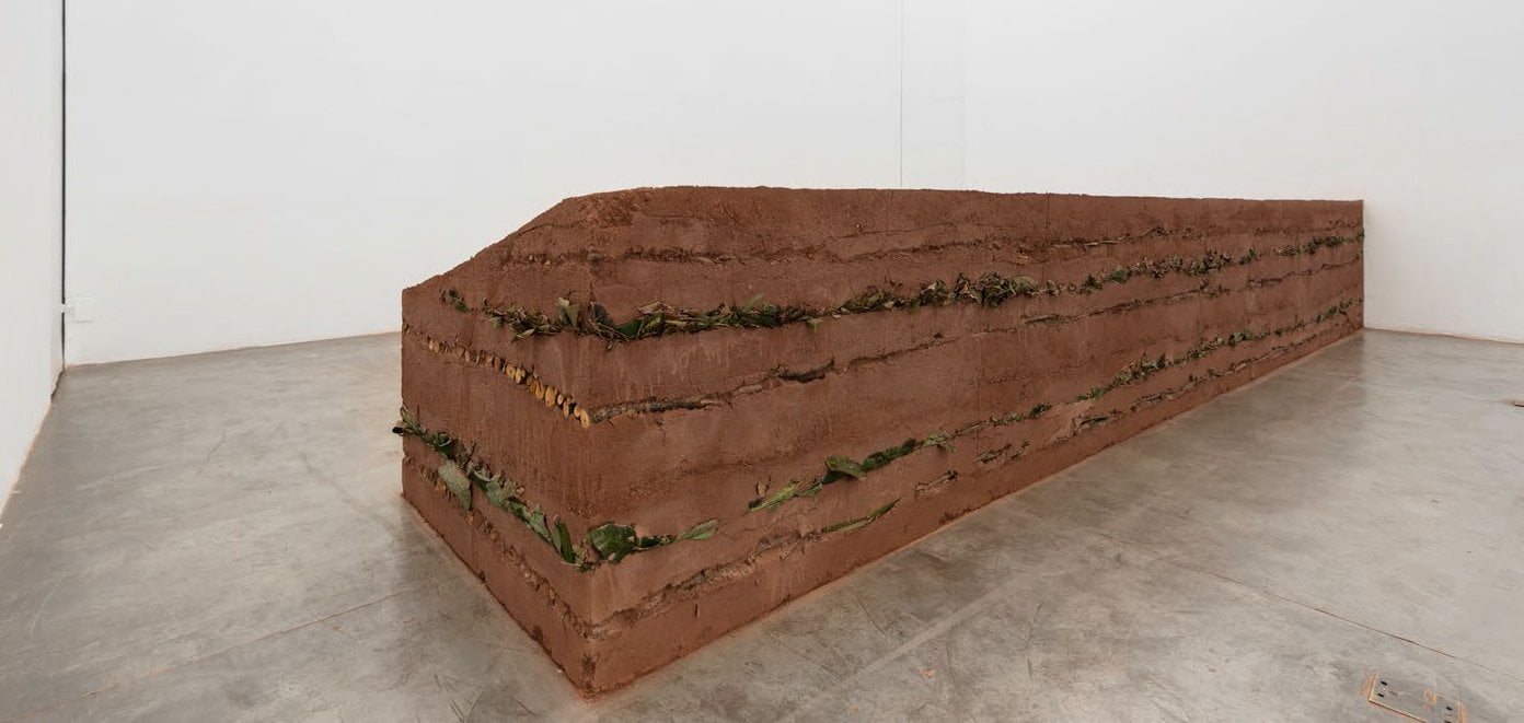 Couche Sourde II 2010 / 2014. soil, trunks and leaves 120 x 90 x 610 cm
